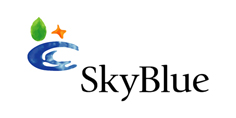 View all SkyBlue Solutions jobs